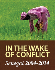 In the Wake of Conflict